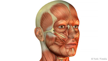 Il existe également d'autres méthodes anti-ronflement impliquant des appareils d'entraînement qui peuvent vous aider à muscler votre gorge